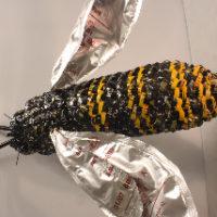 1 wasp
